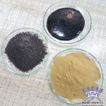 Licorice DGL powder Granules Liquid